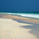 Beautiful pink sands of Harbor Island, The Bahamas by aaxford