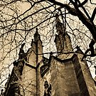 St Patrick Cathedral in Winter 1- New York City by GJKImages