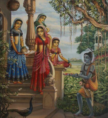 Krishna as shaiva sanyasi Sticker