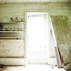 In the Laundry by Debra Fedchin