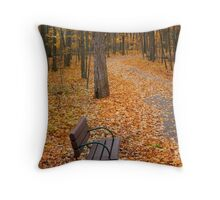 Bench In A Park Throw Pillow