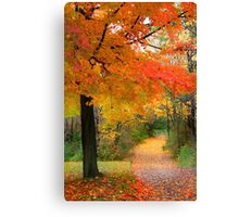 Orange Trees Canvas Print