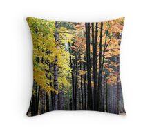 Scenic Autumn Time Throw Pillow