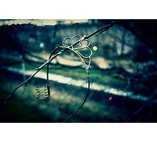 Rusted, busted Princess Photographic Print