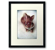 Bunny Fufu. Framed Print