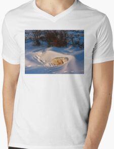 Yoga Bear savasana Mens V-Neck T-Shirt