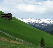 Tirol by Christine Wilson