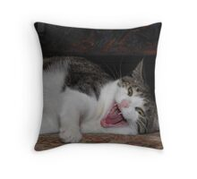 What nice teeth you have... Throw Pillow