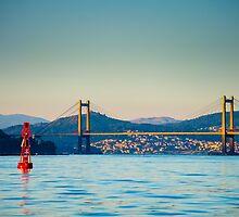Rande Bridge, Galicia, Spain by Paloma Trujillo