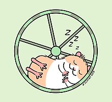 Hamster Sleeping in Exercise Wheel by Zoe Lathey