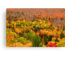 Beautiful autumn landscape  Canvas Print