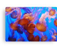 Dancing Queens Canvas Print