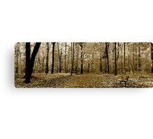 Panoramic Landscape  Canvas Print