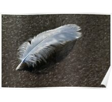 Silken Feather Poster