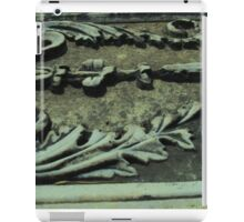 Piece of an ancient world iPad Case/Skin