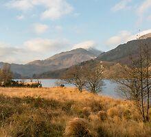 Llyn Gwynant in Autumn by Nick Jenkins