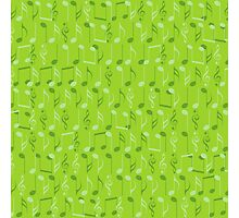 Small music notes Photographic Print