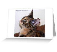 Jeweled Eyes Greeting Card