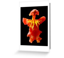 Clown Hair Baby - A new perspective on Orchid Life Greeting Card