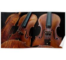 Modern Violin Collection - Stradivarius & friends Poster
