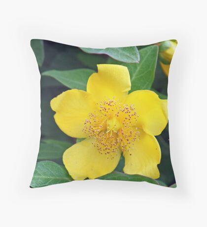 Yellow Camellia  Throw Pillow