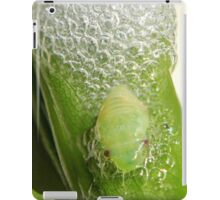 Frog hopper nymph iPad Case/Skin