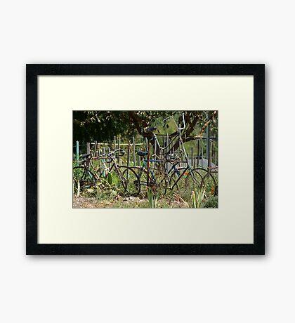 Giants Cycle Framed Print