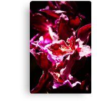 Orchid Dance Canvas Print
