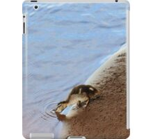 Daily routine iPad Case/Skin
