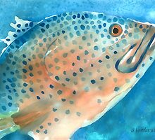 Grouper by arline wagner