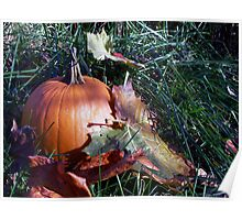 Pumpkin Time Poster