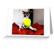 Having A Ball Greeting Card