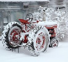 Dependable and Faithful Farmall Tractor by Jodie Keefe