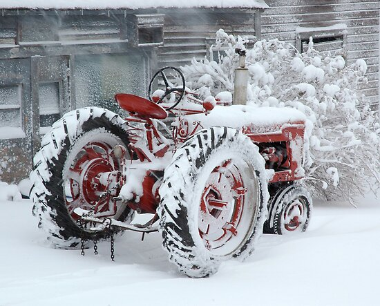 """""""Dependable and Faithful Farmall Tractor"""" by Jodie Keefe ..."""