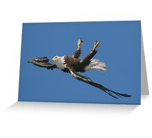 Mid Flight Flip Greeting Card