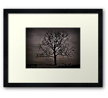Trees are our best antiques Framed Print