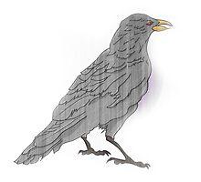 Raven Bird by aidsch