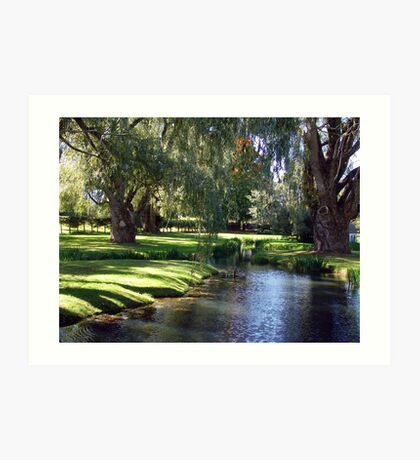 The Willows of Grand Pre Art Print