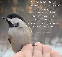 """""""Your Heavenly Father Feeds Them"""" by Gail Jones"""