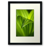 Nature Unfurls Framed Print