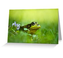 Wild Green Frog Greeting Card