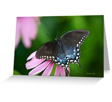 Spicebush Butterfly Greeting Card