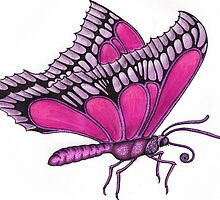Butterfly in Ink & Pencil by RIYAZ POCKETWALA