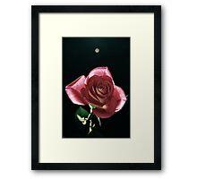 Una Bellezza Framed Print