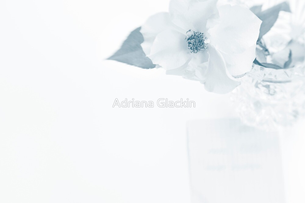 ~ forever and a day ~ by Adriana Glackin