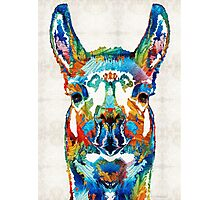 Colorful Llama Art - The Prince - By Sharon Cummings Photographic Print