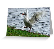 Goose In a Flap Greeting Card