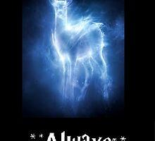 Harry Potter by baller2