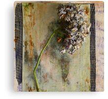 La belle historie d' Hortense Canvas Print
