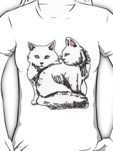 White Maine Coons Cats with Pink T-Shirt